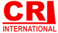 CHIMNEYS AND REFRACTORIES INTERNATIONAL SRL